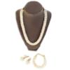 elegant clear crystals necklace set